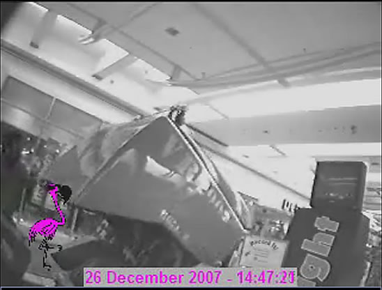 Mall cam photo 1