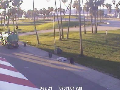 Venice Beach Cam
