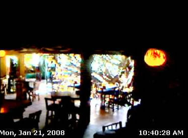 Tree House Restaurant photo 1