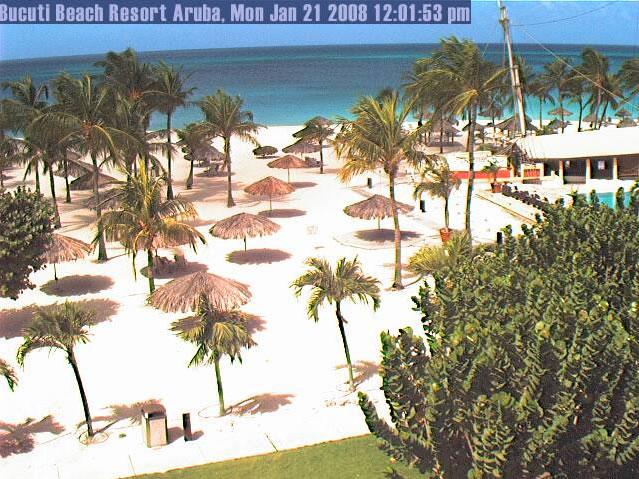 Beach View at Bucuti Beach Resort  photo 3