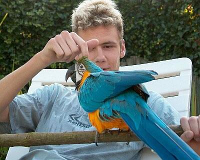 Parrot Cam photo 1