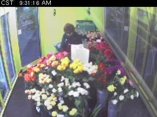 Flower Cam photo 2
