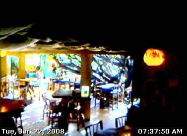 Tree House Restaurant photo 2