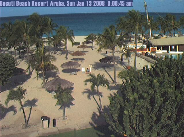Beach View at Bucuti Beach Resort  photo 2
