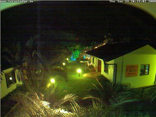 Phuket Lotus Lodge photo 2