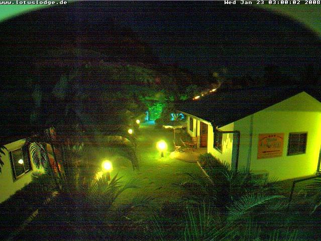 Phuket Lotus Lodge photo 1