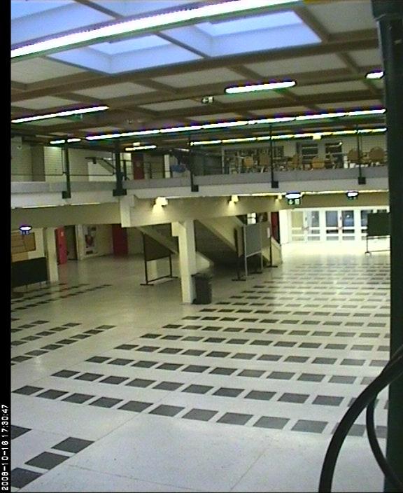 Bernoulli Gymnasium photo 6