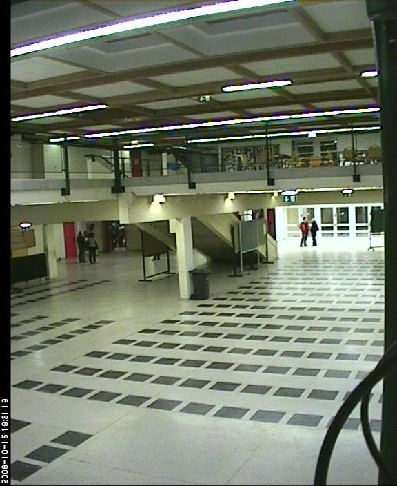 Bernoulli Gymnasium photo 4