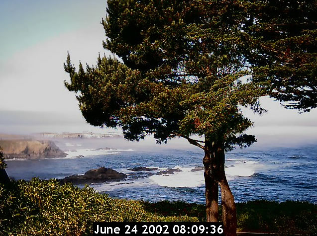 Agate cove cam photo 3
