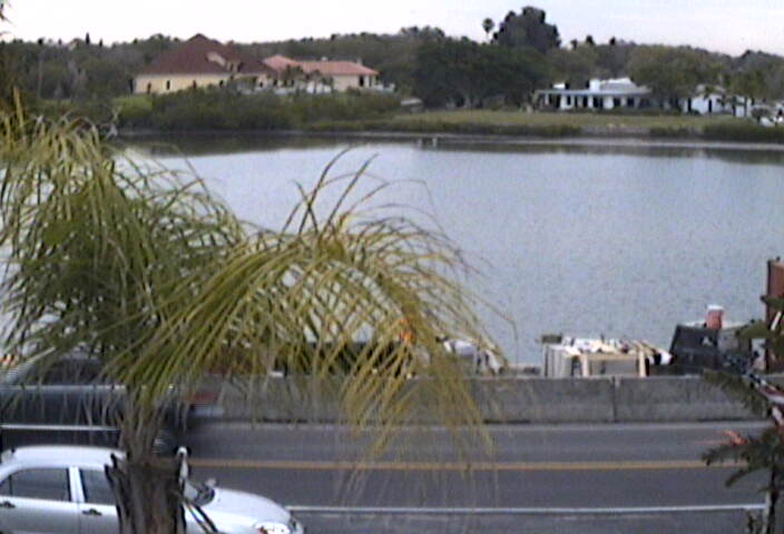 Gulf Coast Cam photo 5