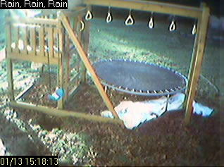 Backyard Cocoa Cam photo 3