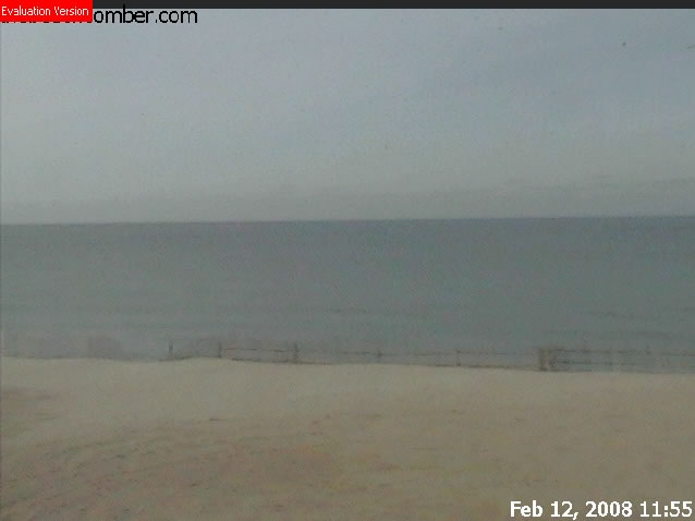 Cape Cod Cam photo 2