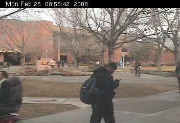 Mesa State College photo 1