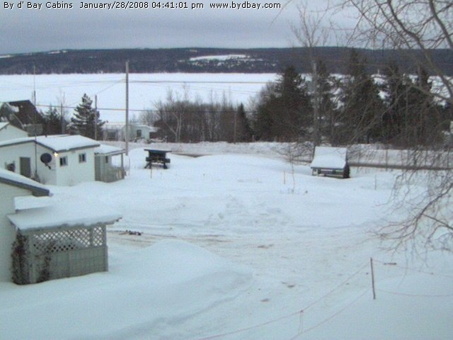 Port Blandford photo 4