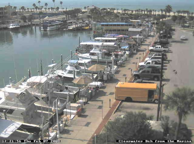 Clearwater Marina photo 4