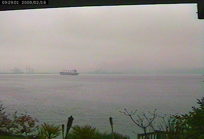 Browns Point Webcam photo 2