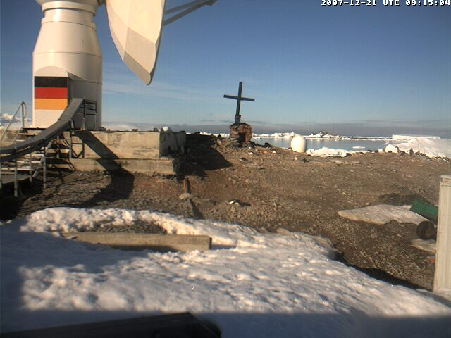 Penguin Cam photo 5