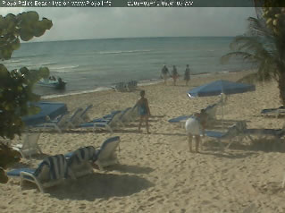 Playa Palms Resort photo 3