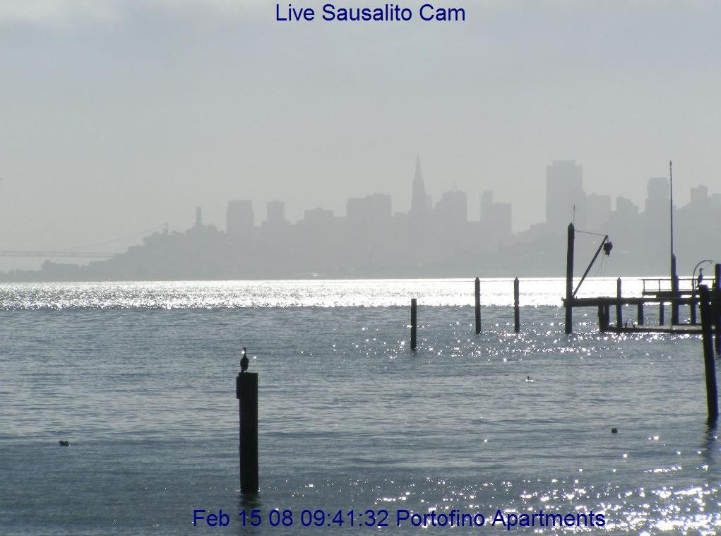 Sausalito Cam photo 6