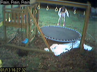 Backyard Cocoa Cam photo 1