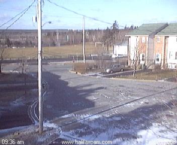 Stanley Park, Halifax photo 5