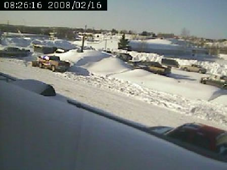 Caribou webcam photo 6