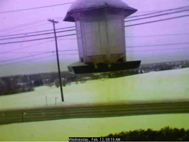 Birdfeeder & Weather  Cam photo 1
