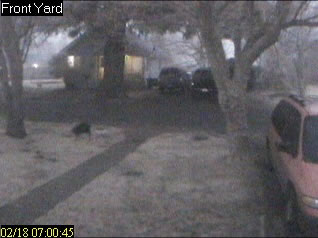 Front Yard Weather Cam photo 2