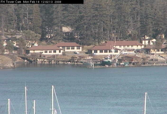 Friday Harbor Tower Cam 3 photo 3
