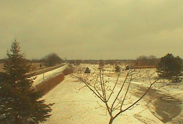 Boone County Arboretum Cam photo 1