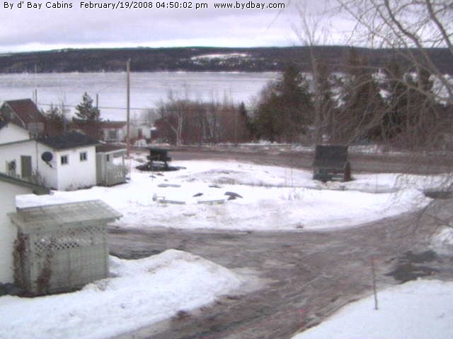 Port Blandford photo 1