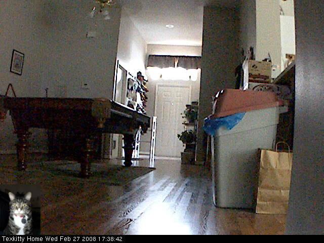 J. Pussycat's Apartment photo 1