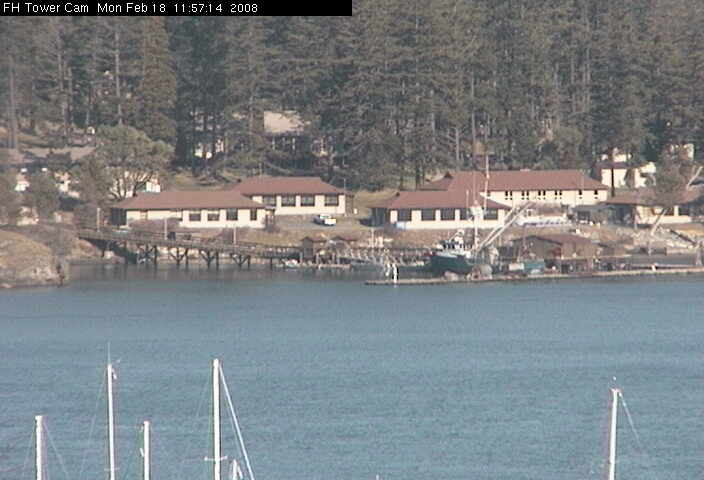 Friday Harbor Tower Cam 3 photo 2
