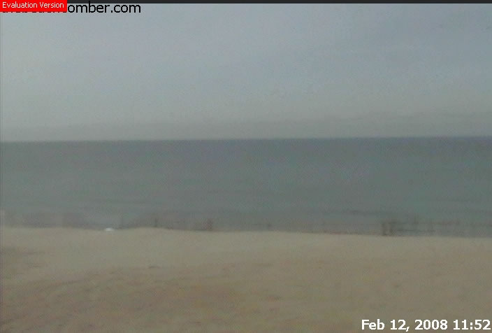 Cape Cod Cam photo 1