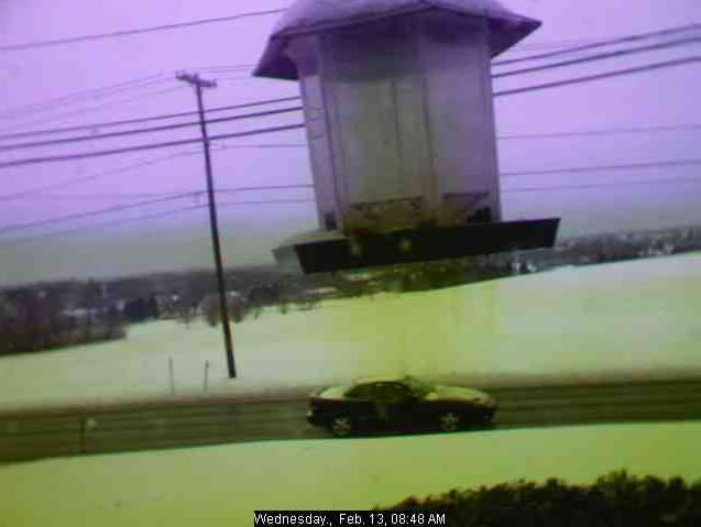 Birdfeeder & Weather  Cam photo 3