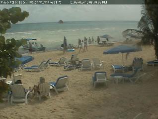 Playa Palms Resort photo 4