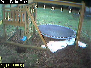 Backyard Cocoa Cam photo 2