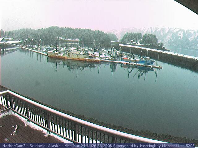 Seldovia webcam 1 photo 3