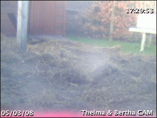 Thelma & Louis webcam photo 1