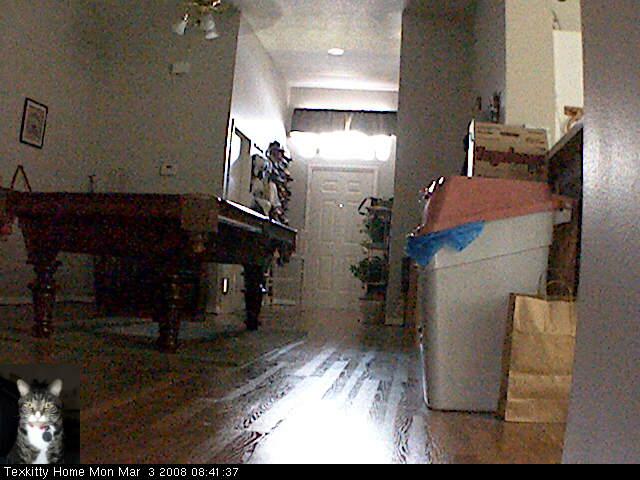 J. Pussycat's Apartment photo 3