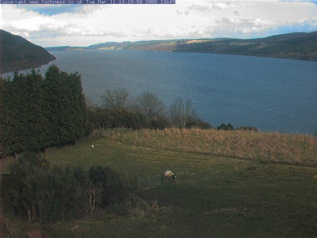 Loch Ness Cam photo 4
