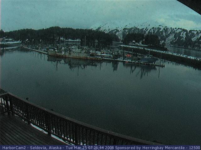 Seldovia webcam 1 photo 4