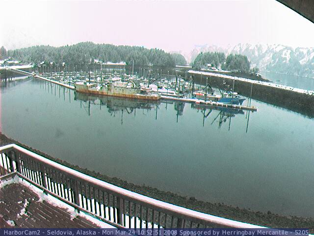 Seldovia webcam 1 photo 2