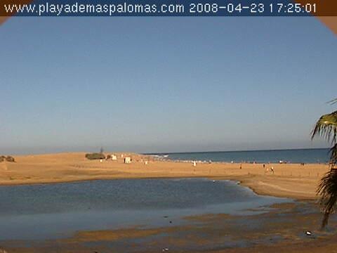 Pond of Maspalomas  photo 3