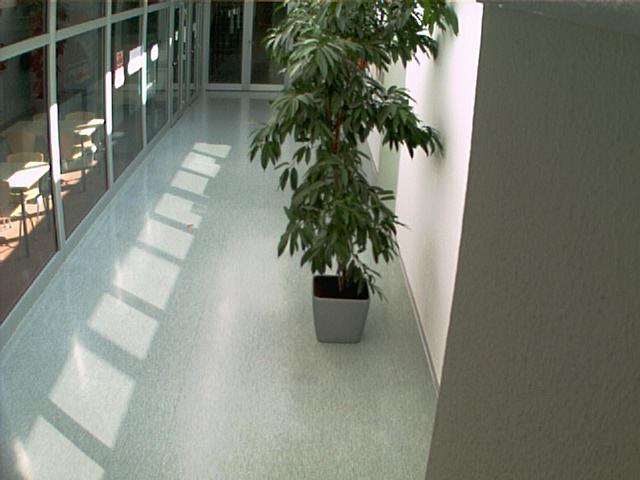 Nice hall webcam photo 2