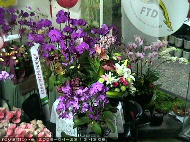 Royal International Flower Design photo 3