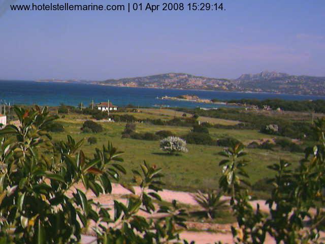 Stelle Marine Hotel photo 3