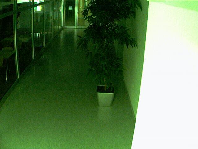 Nice hall webcam photo 3