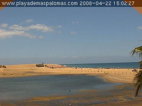 Pond of Maspalomas  photo 1