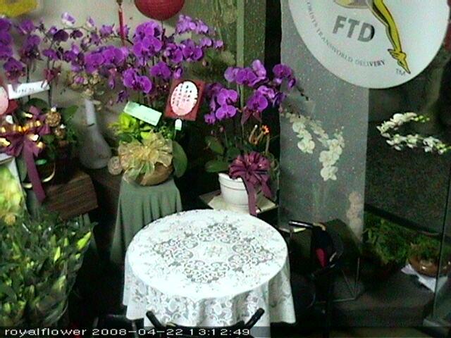 Royal International Flower Design photo 2
